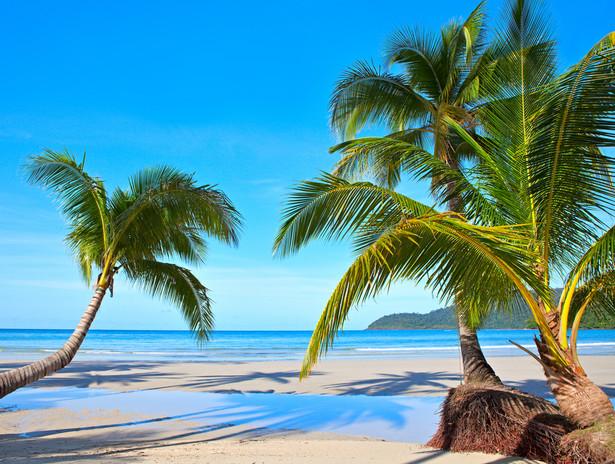 5. Wyspy Salomona Wydatki rządowe: 51,2 proc. PKB Wyspy Salomona to państwo leżące pomiędzy Australią i Azją. Archipelag Wyspy Salomona składa się z kilkuset wysepek, z których największa – znana osobom interesującym się przebiegiem działań wojennych w czasie II wojny światowej - wyspa Guadalcanal jest mniejsza od województwa opolskiego. Krajem rządzi gubernator, który jest tu oficjalnym reprezentantem aktualnie panującego brytyjskiego monarchy. Władze Wysp Salomona na zabezpieczenie socjalne mieszkańców wydają 8,25 proc. PKB. Najwięcej funduszy pochłaniają wydatki na ochronę zdrowia obywateli – na ten cel przeznaczany jest co czwarty dolar z budżetu państwa. W ramach tych wydatków rząd Wysp Salomona inwestuje w wodociągi, szpitale i poradnie medyczne oraz kampanie profilaktyczne. Wiele środków poświęca się również na uświadamianie obywateli o zagrożeniach i sposobach leczenia gruźlicy, malarii, AIDS, chorób dziecięcych i wenerycznych.