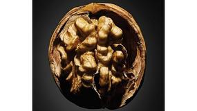 """Martwa natura w wersji XXL. """"Owoce Ziemi"""" Igora Gaidaja w Galerii ZPAF"""