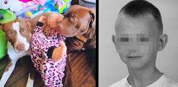 12-letni Kamil został zagryziony przez psa kolegi. Sąd podjął ważną decyzję...