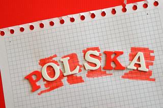 PO wyprzedza Polskę 2050! [Najnowszy sondaż]