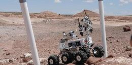 Polacy na Marsie! Zdjęcia!