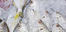 Kupujesz rybę? Lepiej mrożoną