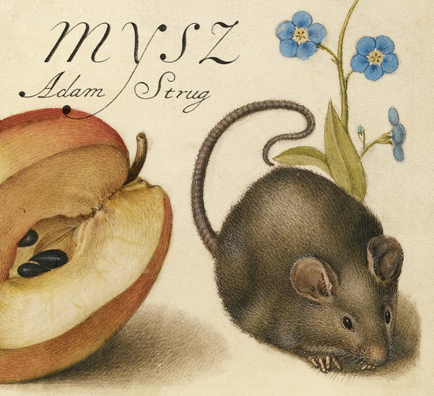 """Adam Strug """"Mysz"""""""