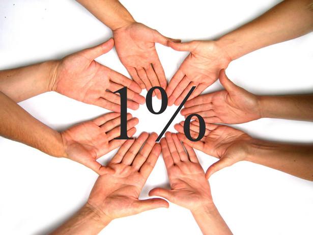 Polacy najchętniej przekazują 1 proc. podatku organizacjom pożytku publicznego działającym na rzecz nieuleczalnie chorych, osób niepełnosprawnych i zwierząt.