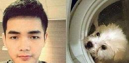 Zwyrodnialec utopił psa w pralce!