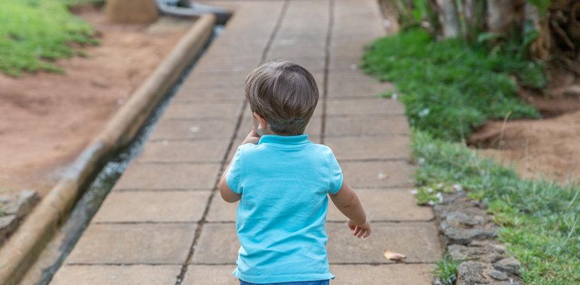 2-latek sam spacerował po ulicy w Staszowie