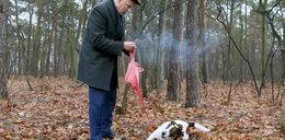 Korwin-Mikke: fajerwerki są dobre dla psów