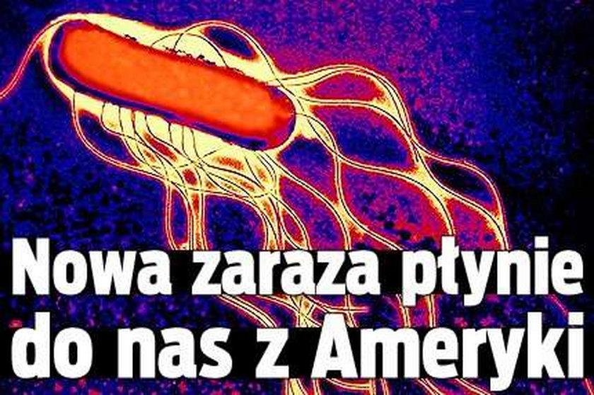 Nowa zaraza nadciąga z USA!