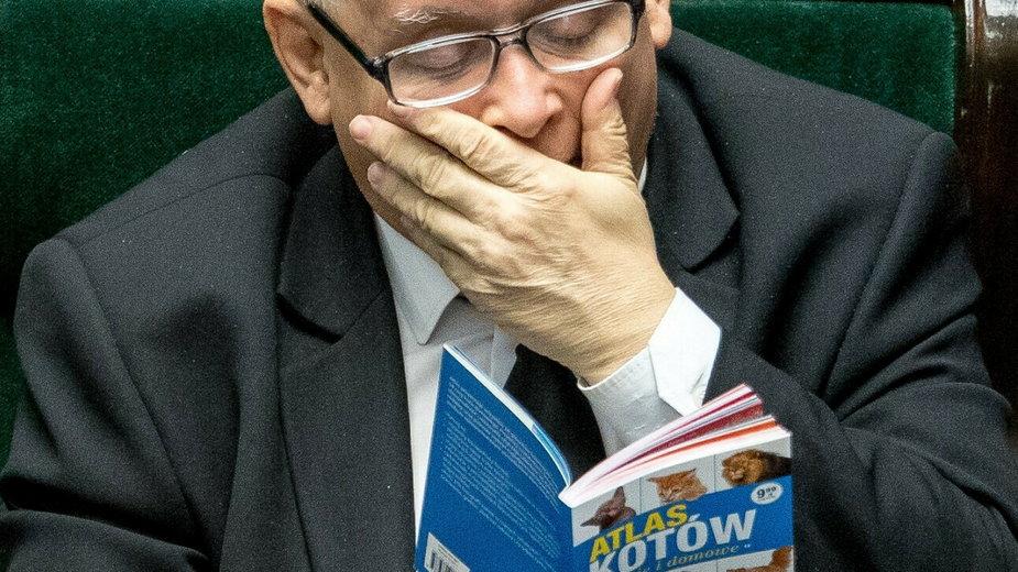 """Jarosław Kaczyński i """"Atlas kotów"""", 2017 r."""