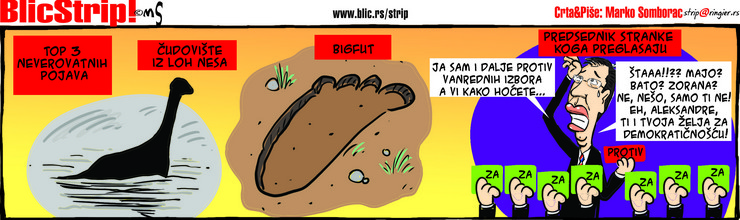 BlicStrip3103