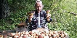 Oto prawdziwy król grzybów. Zdradza, na czym polega jego sekret