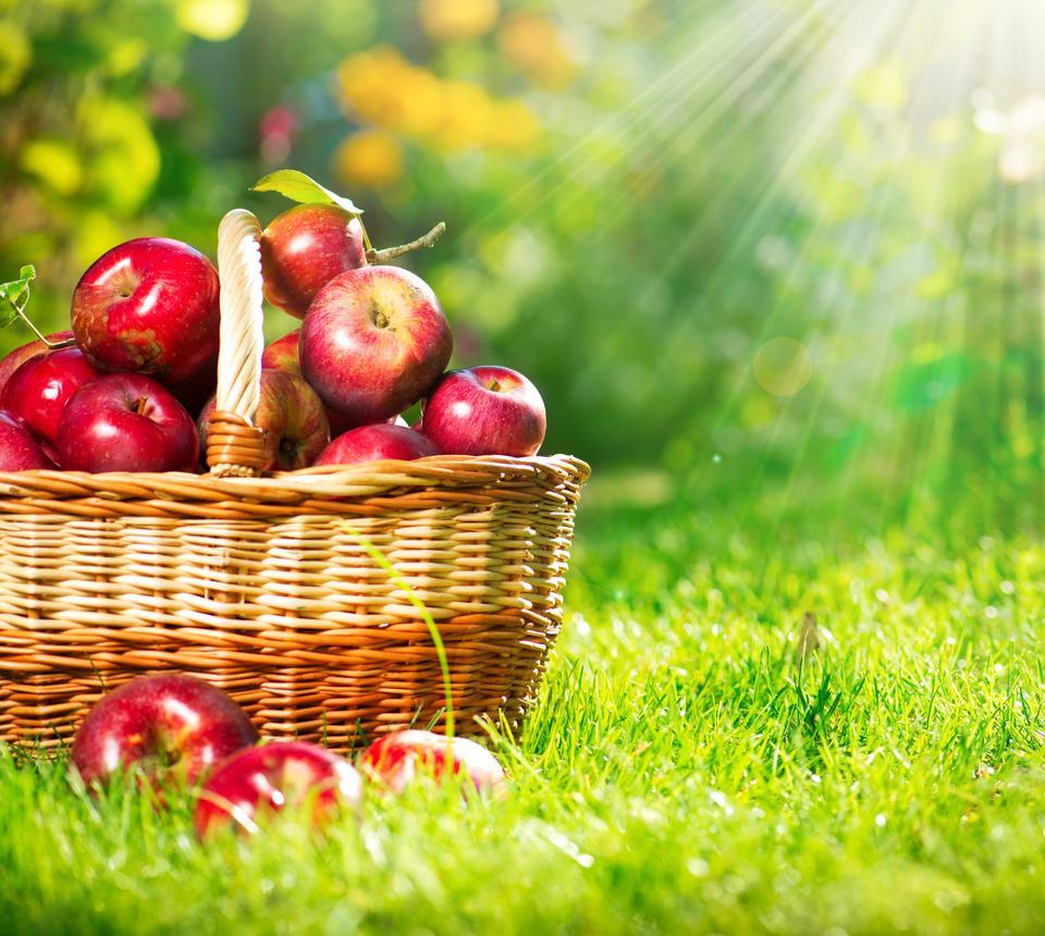 7 produktów anti-aging - Jabłka