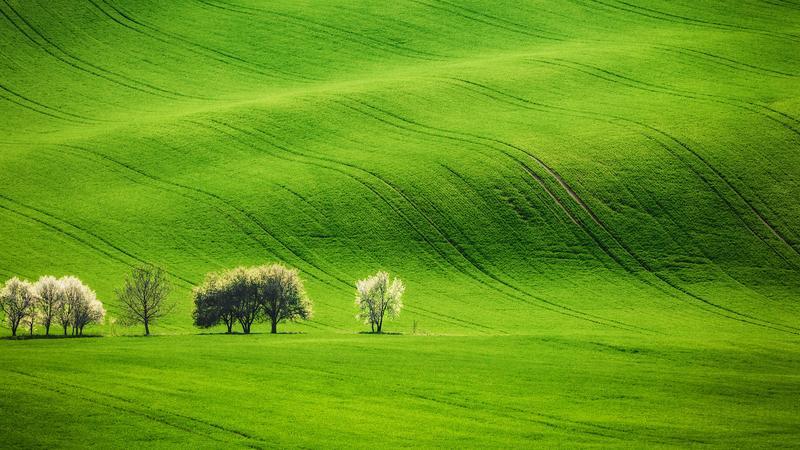 Morawskie krajobrazy