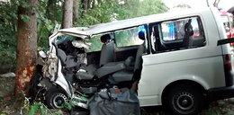Bus rozbił się na drzewie