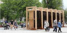 Tężnia na placu Hallera już otwarta!