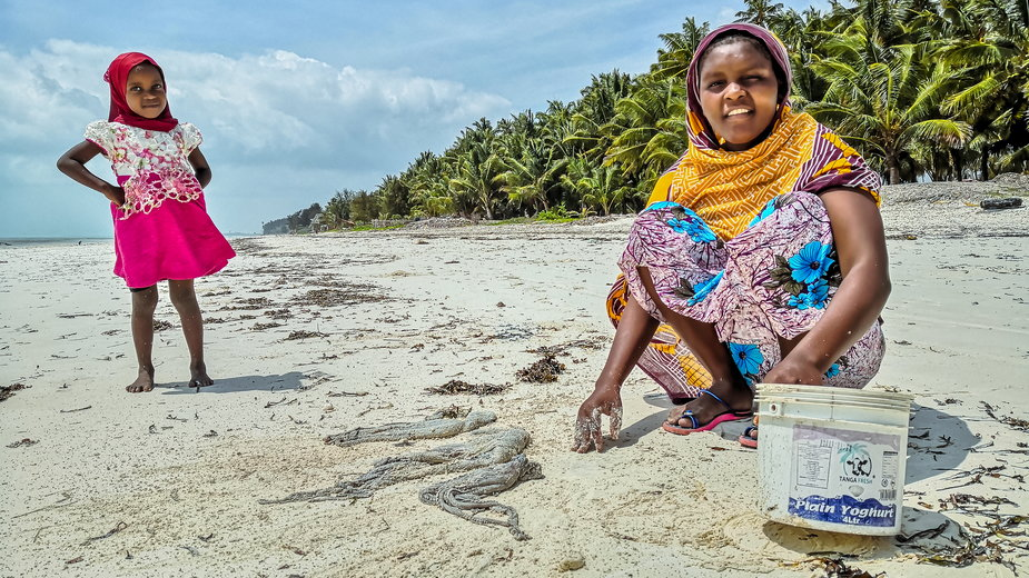 Zanzibar - plaża