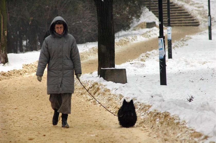 Kaczyńscy przeżywają śmierć ukochanego psa