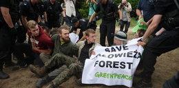 Policja wkroczyła do obozu ekologów. Nie wygląda to dobrze