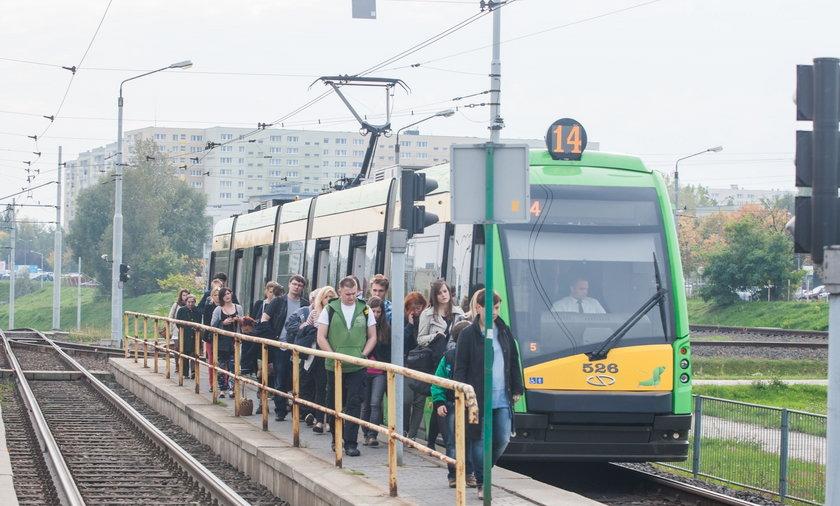 ZTM w Poznaniu