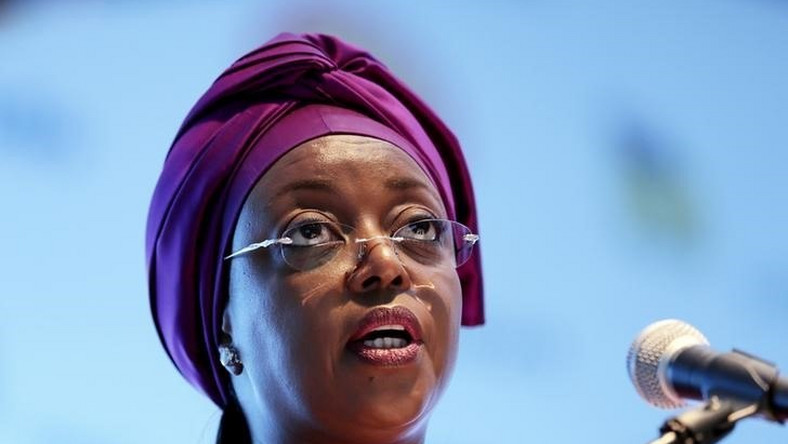 Nigeria's Minister of Petroleum Diezani Alison-Madueke addresses delegates at the opening of the Nigeira Oil & Gas 2014 conference (File photo)