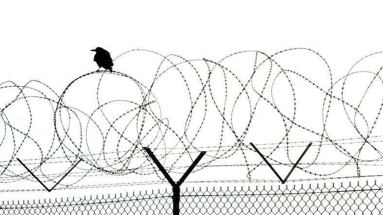 Więzienny płot