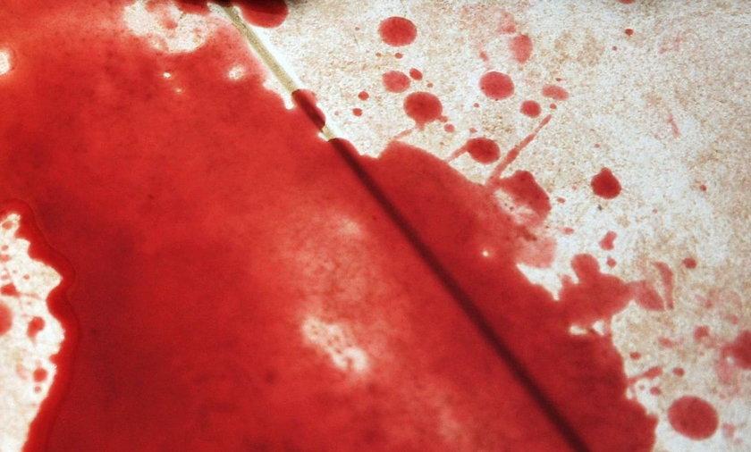 Syn krzyczał, że mordują mu matkę. Brutalny atak na Polkę