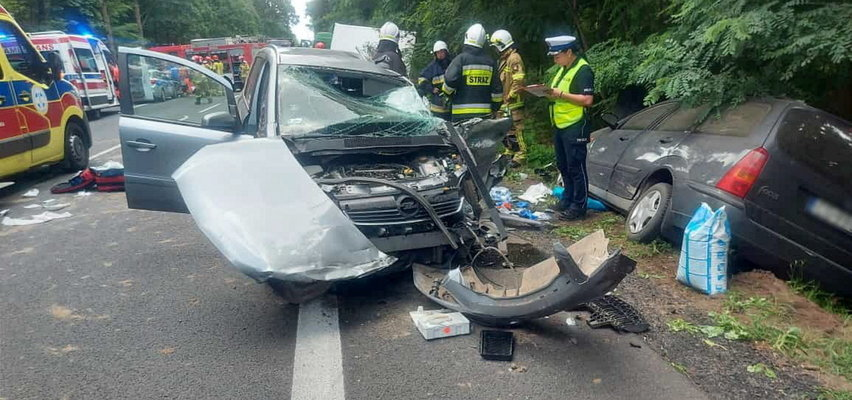 Śmiertelny wypadek w miejscowości Budzyń. Zmarło kilkuletnie dziecko