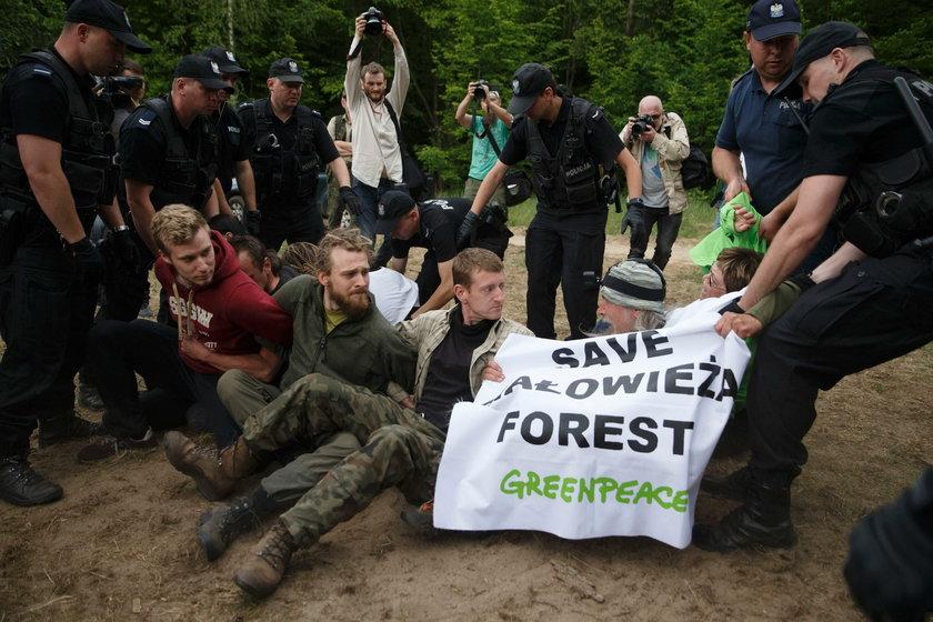 Protestowali w obronie Puszczy Białowieskiej. Policja skierowała wnioski o ich ukaranie do sądu