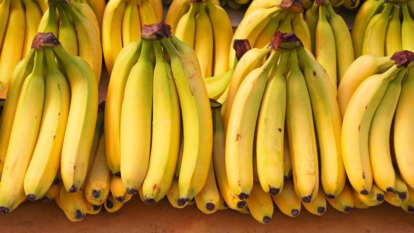 Groźny Pająk W Lidlu Klient Znalazł Kokon W Bananach