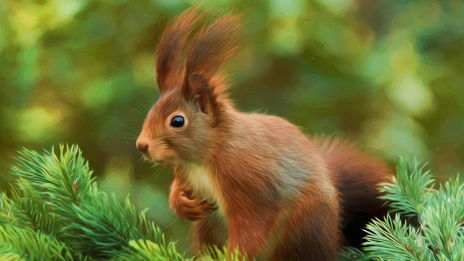 Obserwacje zwierząt pozwalają zrozumieć lepiej naszą łączność z naturą