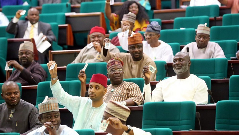 Some of the members of the House of Reps argued that the bill is inconsistent with the constitution. (Daily Times)