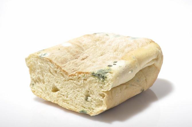Da li biste vi prosto odstranili buđavi deo hleba i pojeli ostatak?