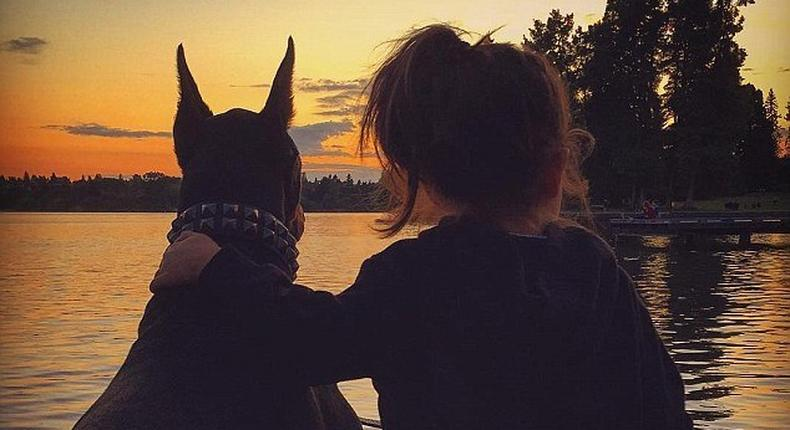A four-year-old girl Siena Prucha and her unlikely best friend pup Buddha, instagram page has gone viral.