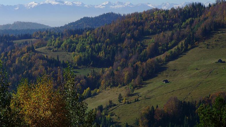 Prawie 20 weteranów, reprezentujących nową generację, bierze udział w rehabilitacyjnym rajdzie górskim w Gorcach