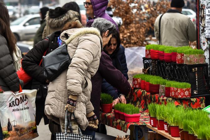 Badnjaci i žito na tezgama u gradovima po Srbiji