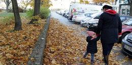 Posprzątajcie gnijące liście