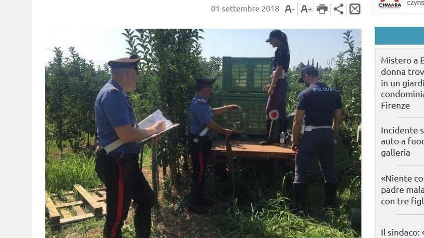 Niesamowite Włochy: Reinhold Thurner więził w skrzyni Polkę, powiedział dlaczego QG29