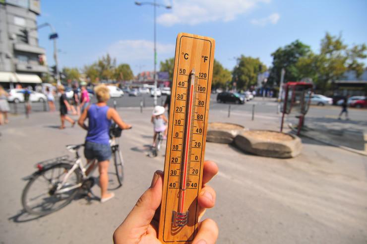 novi sad 300 bulevar oslobodjenja toplota vrucina crveni alarm iznad 40 stepeni foto Robert Getel