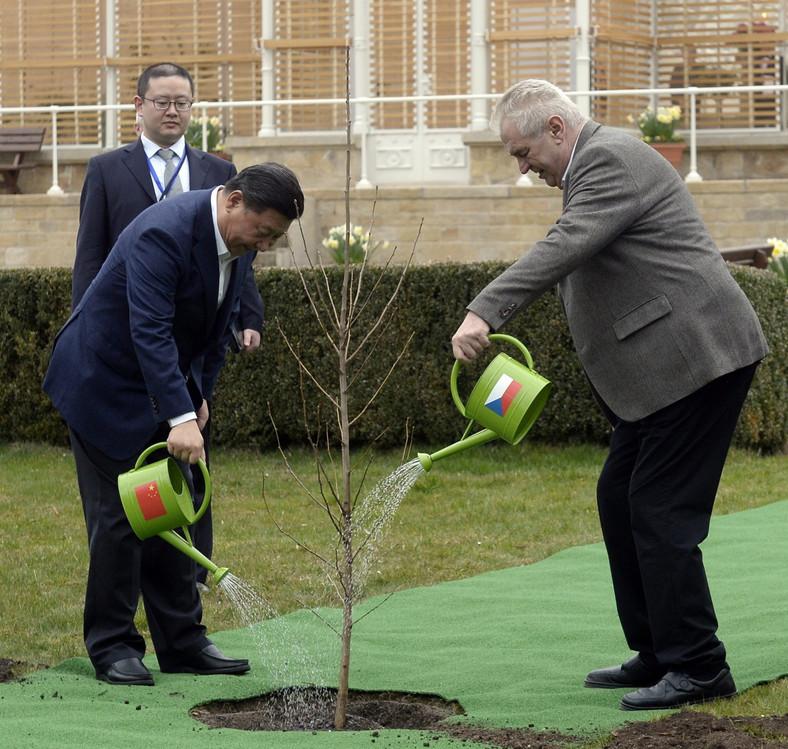 Xi Jinping i Milosz Zeman