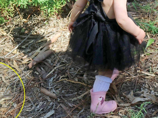 """""""Izvela sam ćerke u šetnju, a kad sam bolje pogledala ovu sliku SLEDILA SAM SE"""": Roditelji, BUDITE OPREZNI - ja sam umalo ostala bez devojčica"""