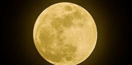 Dziś w nocy pełnia i zaćmienie Wilczego Księżyca. Co to oznacza?
