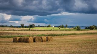 Rolnictwo będzie droższe i skromniejsze