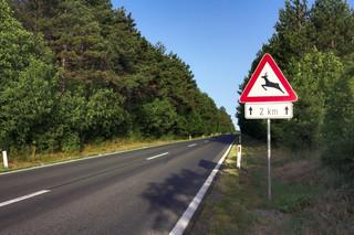 Nadużycia w inwestycjach drogowych. Projekt trafił do rządu