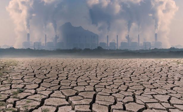 Największa od blisko 100 lat susza trwa w Brazylii.