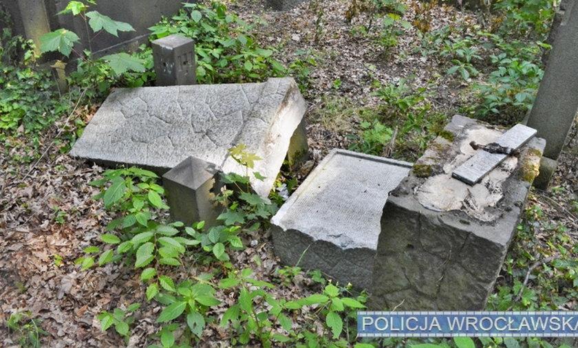 Banda 12-latków zdewastowała cmentarz we Wrocławiu