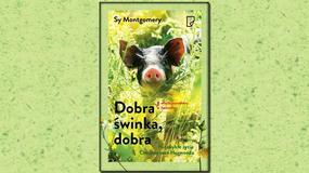 """Życie ze świnią, czyli """"Dobra świnka, dobra"""" Sy Montgomery [RECENZJA]"""