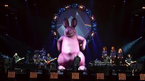 The Australian Pink Floyd Show: udany wyrób floydopodobny