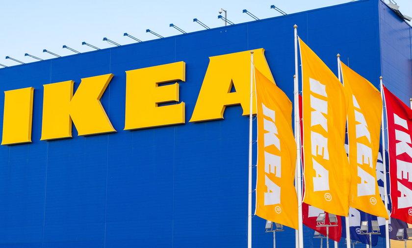 IKEA testuje hot-dogi bez mięsa