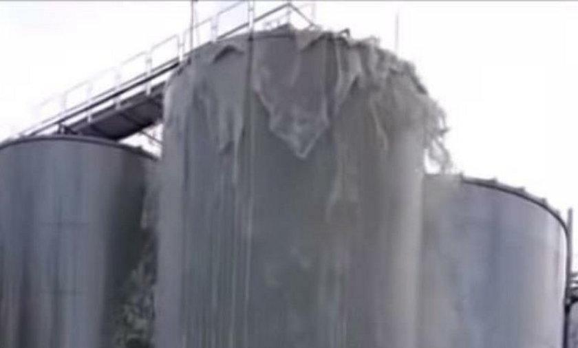 30 tys. litrów prosecco wylało się z powodu awarii we Włoszech