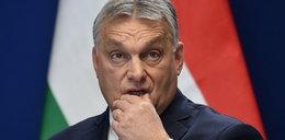 PiS ratuje Orbana. Pomoże jego partii zmienić frakcję w Parlamencie Europejskim